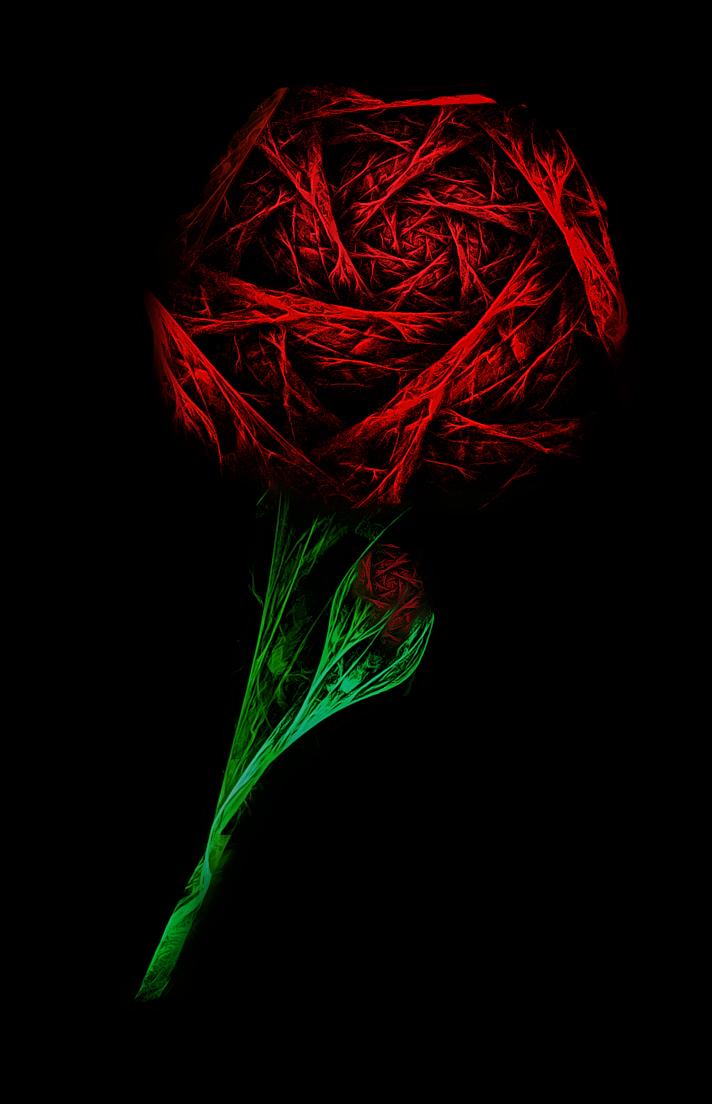Greylien >> Rose by Greylien on DeviantArt