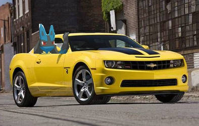 It's a Bumblebee Thang! =).