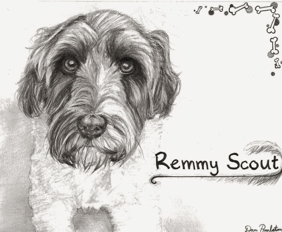 Remmy Portrait Commision by alohaman636