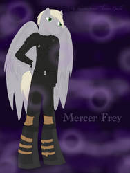 My Skyrim pony-Thieves Guild:Mercer Frey by BlueDoberman