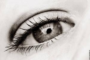 Eye - macro