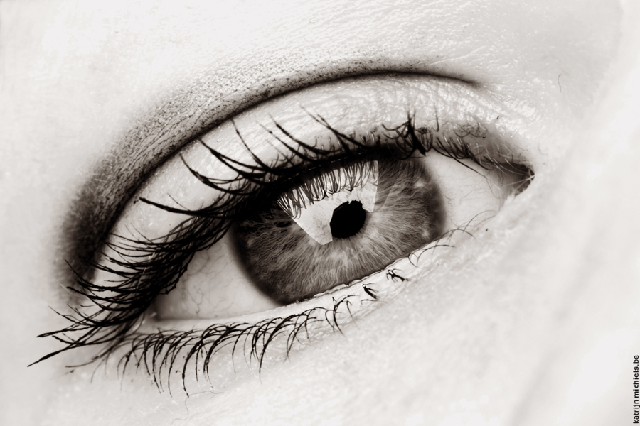 Eyes - Page 2 146e3bc1fdf12aecfb8778505d83ccf2