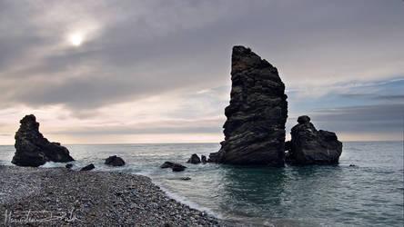 Steal Grey Coast