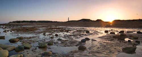 Shorescape by PictureElement