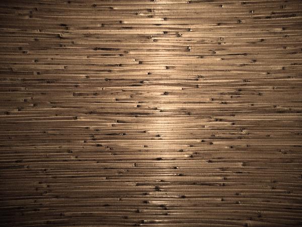 pretty bamboo by zummerfish