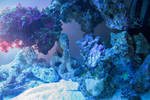 Underwater 5320