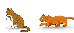 Squirrelflight Creeping up on Leafpool by Squirrelflight001