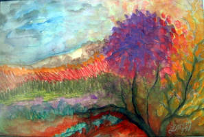 DREAM by Hydrangeas