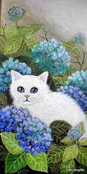 white cat by Hydrangeas