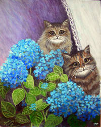 Cats and blue by Hydrangeas