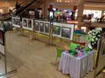 my last exhibition