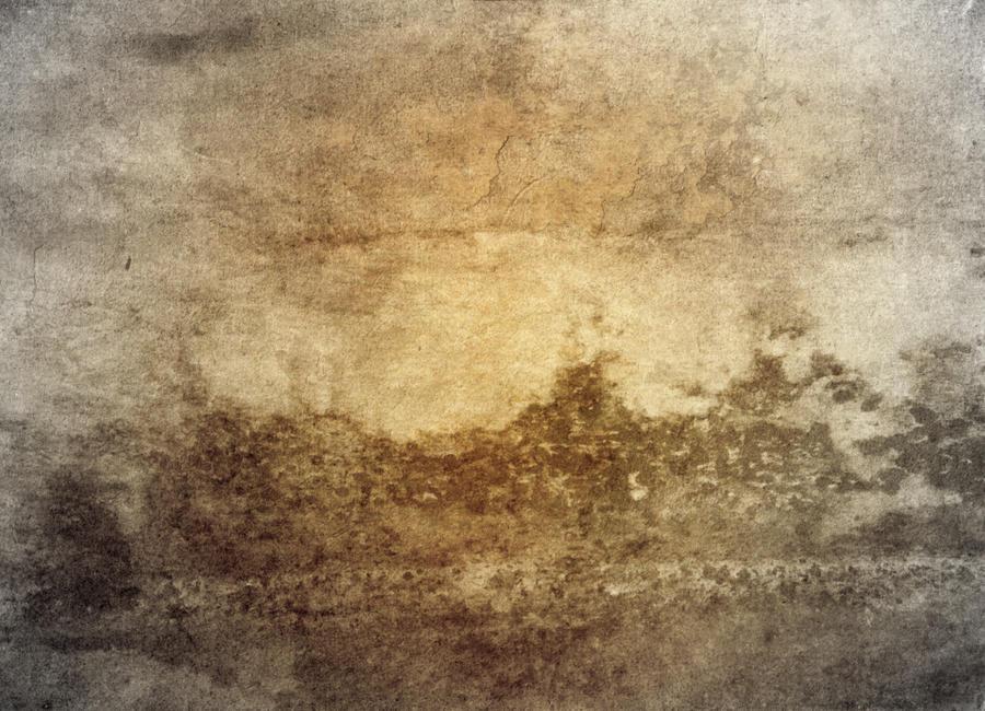Texture Mr. Mold O. Wall by E-DinaPhotoArt