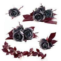 Stock Dark Roses by E-DinaPhotoArt