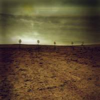 Premade BG Dry Land