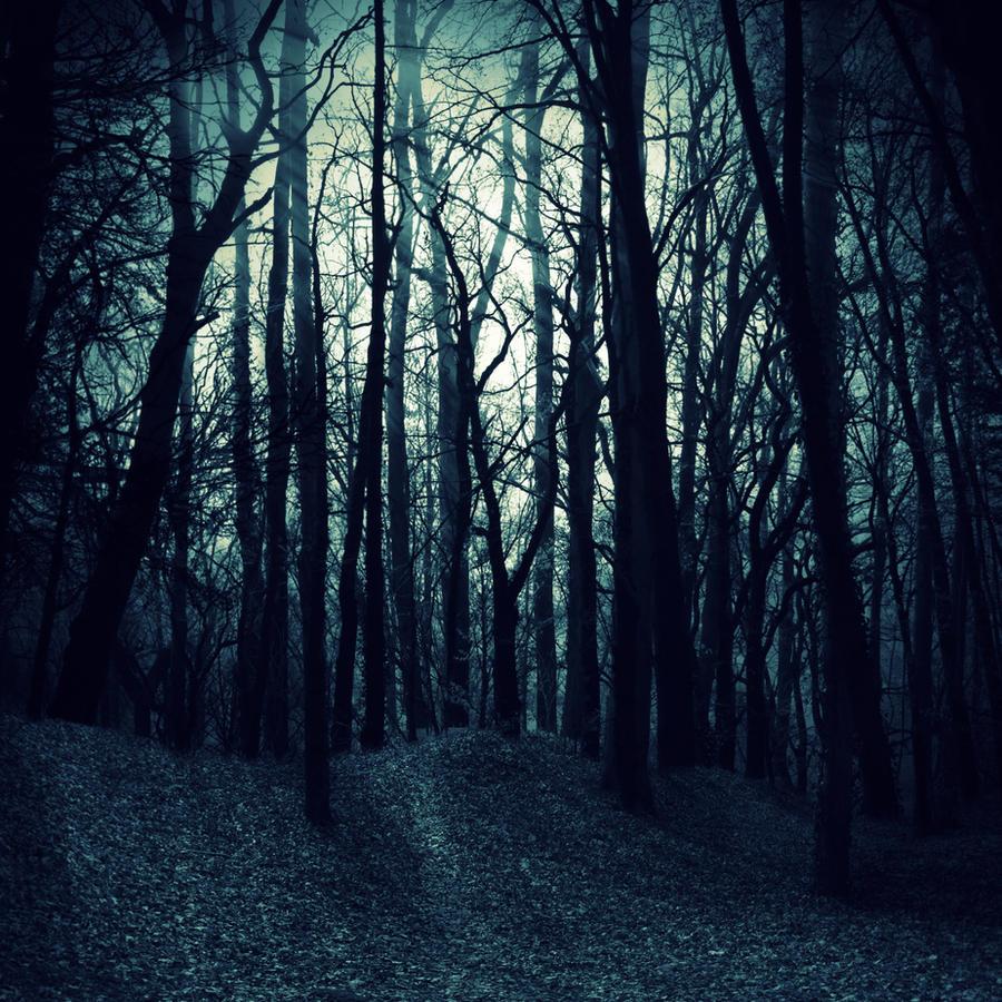 Premade Bg Dark Woods By E Dinaphotoart