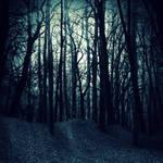 Premade BG Dark Woods