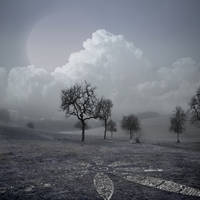 Premade BG In Nature 3 by E-DinaPhotoArt