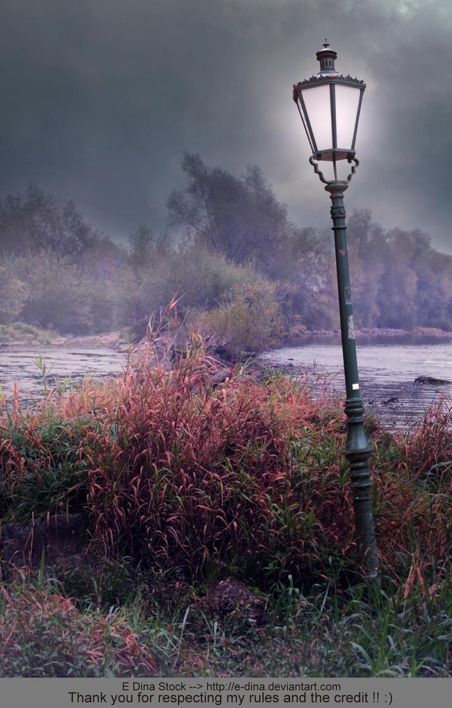 Premade BG Swamp landscape by E-DinaPhotoArt