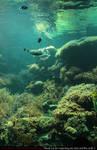 Stock Underwater 2