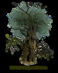 HQ PNG Stock Tree Man