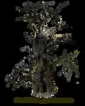HQ PNG Stock Spooky Tree Mann