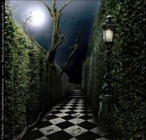 Premade BG Labyrinth at Night by E-DinaPhotoArt