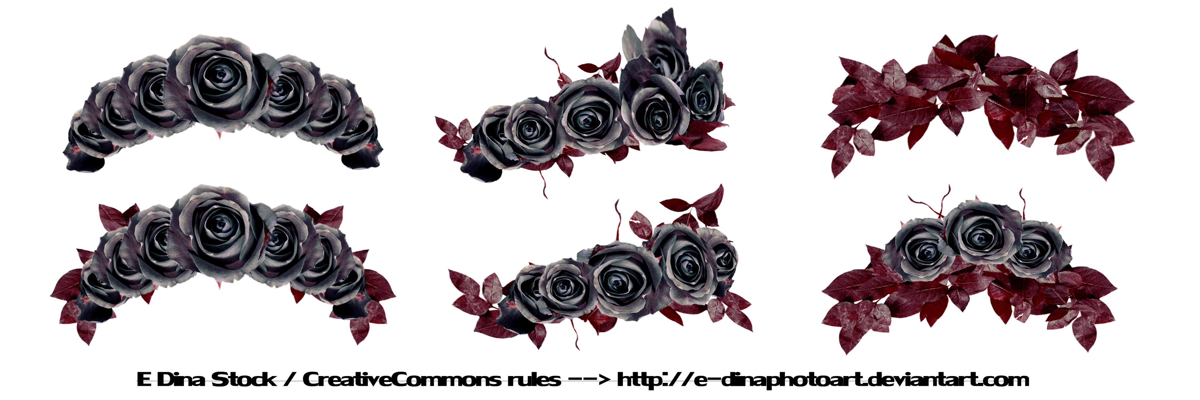 Png Stock Floralwreath Dark Roses By E Dinaphotoart On Deviantart