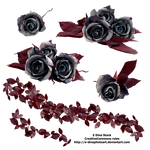 PNG Stock Black Roses