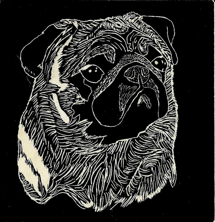 Pug by jgirlmaxwell
