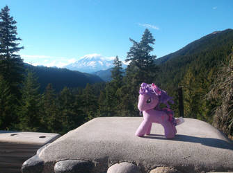 Twilight Sparkle Visits Mt. Rainier
