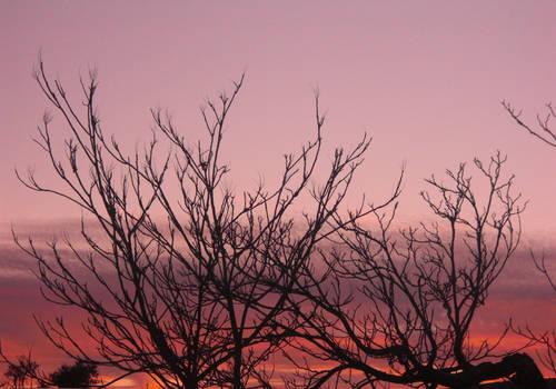 Sunset 2012