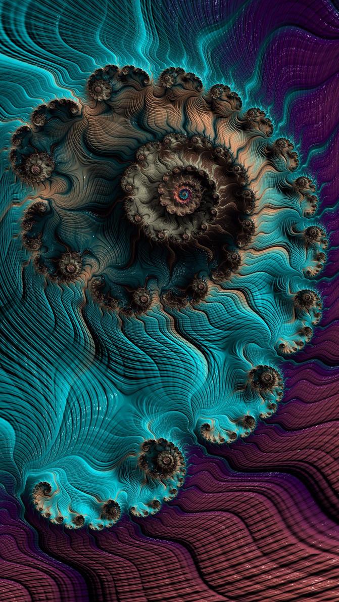 Nautilus by SayaBlood