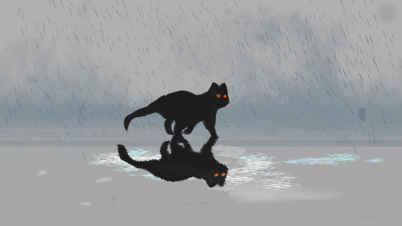 cat_by_pictaloo_der6t59-fullview.jpg?tok
