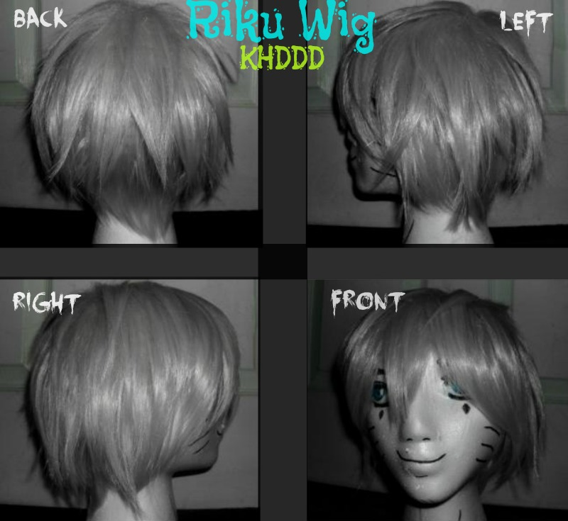 Riku Wig - Kingdom Hearts Dream Drop Distance by TheCoolCosplayer22
