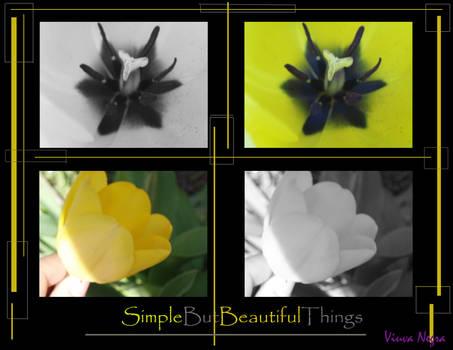 Yellow.Flower