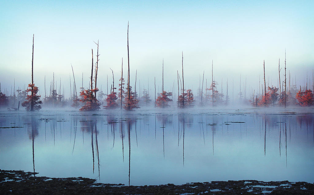 Black Lake, Louisiana by EmileeSelf