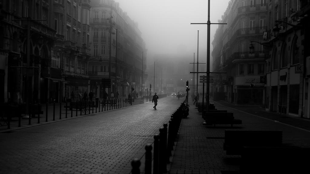 Morning fog by leingad