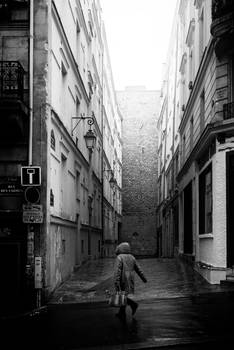 Paris Street CCXXXII