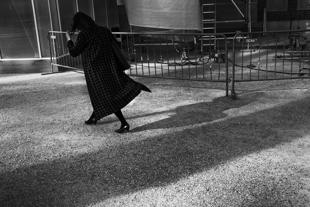Paris Street CCCVIII by leingad