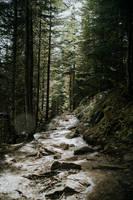 Canada Wandering 4 by leingad