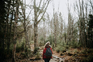 Canada Wandering 7 by leingad