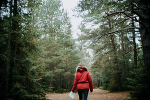 Canada Wandering 5 by leingad