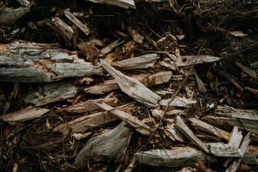 Wood by leingad