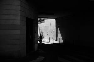 Paris Street 833