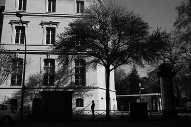 Paris Street 971
