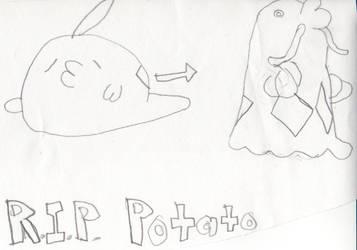 Potato by elnitiarta