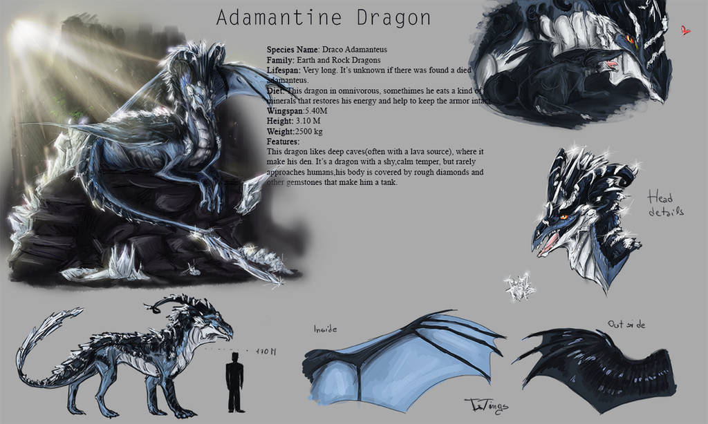 Adamantine Dragon Reference by elementdragon97