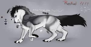 Reikad ref (TEMP) by MaraMastrullo