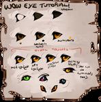 Wow eye tutorial 2018