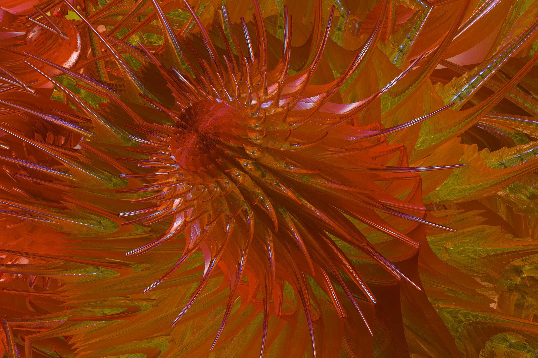 Fractallaria Imperialis by GrahamSym